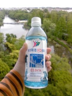 横浜開港150<br />  周年の水
