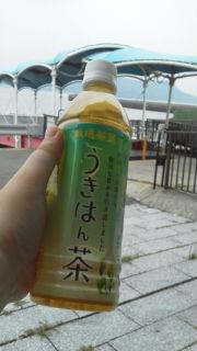 福岡県うきは市の緑茶「うきはん茶」