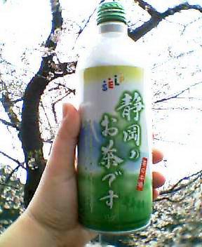 静岡のお茶です